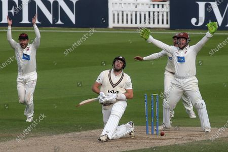 Surrey batsman, Jamie Overton, padded up, but was bowled by Somerset's Roelof Van Der Merwe, much to the delight of Somerset wicketkeeper, Steve Davies during Surrey CCC vs Somerset CCC, LV Insurance County Championship Group 2 Cricket at the Kia Oval on 13th July 2021