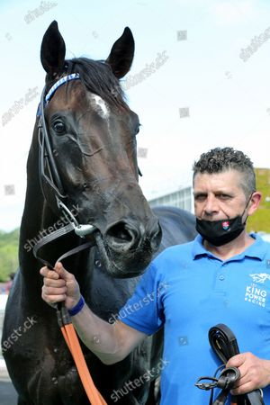 Stock Photo of POSSIBLE MAN (3) ridden by David Probert and trained by Sir Michael Stoute poses after winning The Class 3 Mansionbet Best Ods Guaranteed Handicap Stakes over 1m 2f (£11,500) in a Photo Finishat Nottingham Racecourse, Nottingham