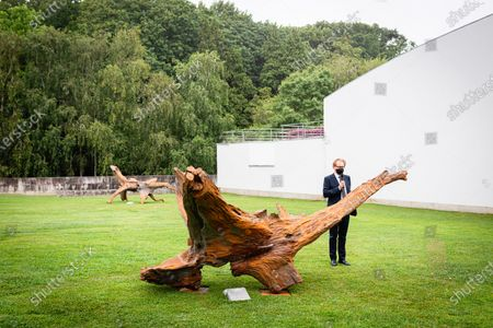 Editorial picture of Pequi tree exhibition by Ai Weiwei in Porto, Portugal - 22 Jul 2021