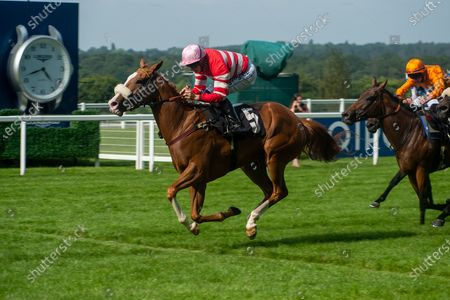 Stock Image of Jockey David Probert wins the Berenberg October Club Supporting Cares Family Fillies Handicap Stakes on horse Havagomecca (Red and white stripped silks and pink cap)