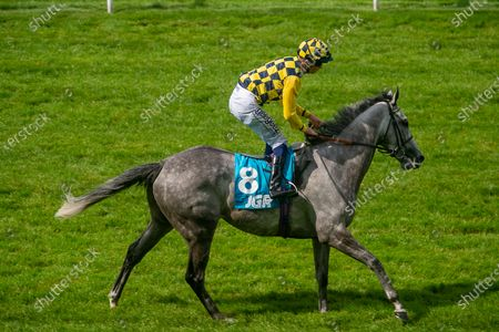 Stock Picture of Jockey David Probert wins the John Guest Racing Handicap Stakes on grey horse Alfred Boucher just beating Frankie Dettori on horse Grand Bazzar