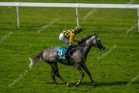 Jockey David Probert wins the John Guest Racing Handicap Stakes on grey horse Alfred Boucher just beating Frankie Dettori on horse Grand Bazzar