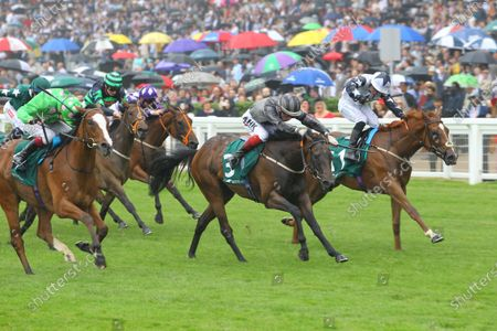 Stock Photo of Zain Claudette and Ray Dawson [right] win the Princess Margaret Keenland Stakes at Ascot from Desert Dreamer [near] and Delmona [centre] at Ascot.