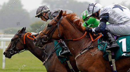 Stock Picture of ZAIN CLAUDETTE (Ray Dawson) wins The Princess Margaret Keeneland Stakes Ascot
