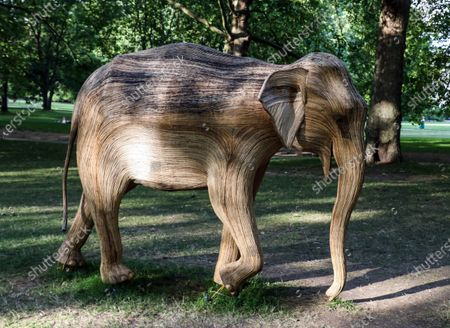 Life-size elephant sculptures spend their last day displayed in London's Green Park as part of CoExistence, an environmental art campaign produced by Elephant Family a charity that works to save endangered Asian wildlife from extinction. The charity was founded by The Duchess of Cornwall late brother, Mark Shand.