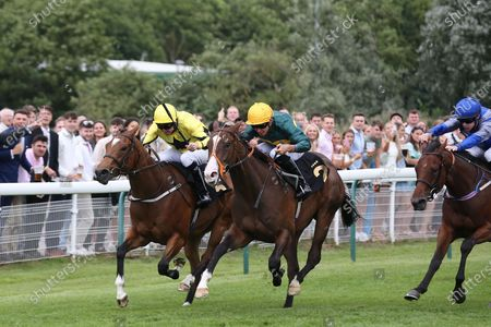 DARK TULIP (2) ridden by Thore Hammer Hansen and trained by Richard Hannon winning The Betstival Season At Mansionbet EBF Maiden Fillies Stakes over 5f (£7,000)  at Nottingham Racecourse, Nottingham