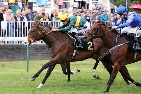 DARK TULIP (2) ridden by Thore Hammer Hansen and trained by Richard Hannon winning The Betstival Season At Mansionbet EBF Maiden Fillies Stakes over 5f (£7,000)at Nottingham Racecourse, Nottingham