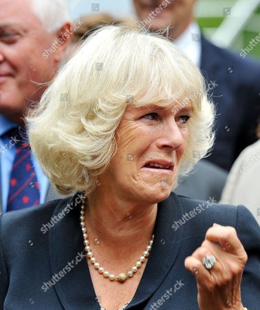 The Camilla Duchess of Cornwall is caught in a fit of giggles as she watches a cat organ
