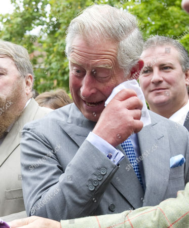 Prince Charles caught in a fit of giggles as he watches a cat organ