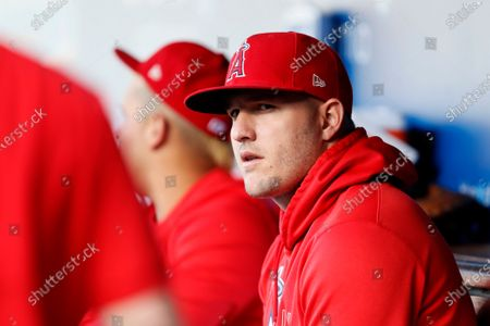 Los Angeles Angels' Mike Trout looks over from the dugout before a baseball game against the Los Angeles Dodgers in LosAngeles