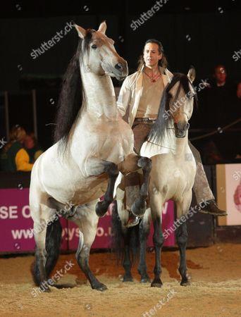 Frederic Pignon with Lusitano horses