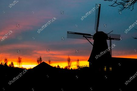 A traditional Dutch windmill as seen around sunset time at the sweet spot called magic hour at the dusk during a cold winter day, where the colorful clear sky is mixing with the clouds. The windmill,  a tourism attraction and symbol for the country, is located in the outskirts of Veldhoven, near the city of Eindhoven in North Brabant region. The specific mill is a bakery and cafe, the Oerse Mill Baker. Veldhoven, the Netherlands on January 25, 2021