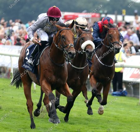 Lusail and Pat Dobbs Win the Al Basti Equiworld Dubai Gimcrack Stakes York Racecourse Trained by Richard Hannon Owned by Al Shaqab Racing