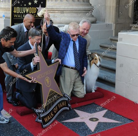 CBS news correspondent and New York Times best selling author Bill Geist unveils his starstar Lassie looks on during a ceremony honoring him with the 2,437th star on the Hollywood Walk of Fame in Los Angeles on April 15, 2011.