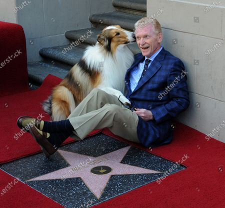CBS news correspondent and New York Times best selling author Bill Geist is congratulated by canine star Lassie as he is honored with the 2,437th star on the Hollywood Walk of Fame in Los Angeles on April 15, 2011.