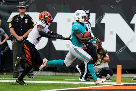 Stock Image of Miami Dolphins wide receiver Kirk Merritt (83) scores a touchdown in front of Cincinnati Bengals defensive back Tony Brown (27) in the second half of an NFL exhibition football game in Cincinnati