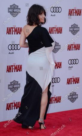"""Cast ember Evangelline Lilly attends the premiere of the sci-fi motion picture """"Ant-Man"""" at the Dolby Theatre in the Hollywood section of Los Angeles on June 29, 2015. Storyline: Armed with a super-suit with the astonishing ability to shrink in scale but increase in strength, con-man Scott Lang (Paul Rudd) must embrace his inner hero and help his mentor, Dr. Hank Pym (Michael Douglas), plan and pull off a heist that will save the world."""