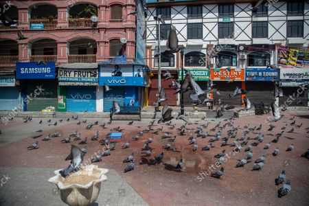 Stock Photo of Pigeons fly in a deserted market area in Srinagar, Indian controlled Kashmir, . Indian authorities cracked down on public movement and imposed a near-total communications blackout Thursday in disputed Kashmir after the death of Syed Ali Geelani, a top separatist leader who became the emblem of the region's defiance against New Delhi. Geelani, who died late Wednesday at age 92, was buried in a quiet funeral organized by authorities under harsh restrictions, his son Naseem Geelani told The Associated Press. He said the family had planned the burial at the main martyrs' graveyard in Srinagar, the region's main city, as per his will but were disallowed by police