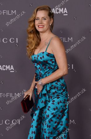 Actress Amy Adams attends the seventh annual LACMA Art+Film gala honoring artist Mark Bradford and filmmaker George Lucas at the Los Angeles County Museum of Art in Los Angeles on November 4, 2017.