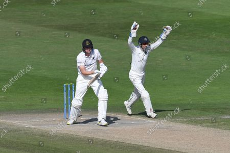 Wicket. 308 - 8. Jack Carson of Sussex is caught by John Simpson off the bowling of Luke Hollman for 0 during the LV= Insurance County Championship match between Sussex County Cricket Club and Middlesex County Cricket Club at the 1st Central County Ground, Hove