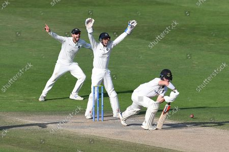 John Simpson and Stephen Eskinazi of Middlesex appeal unsuccessfully for LBW against Ali Orr during the LV= Insurance County Championship match between Sussex County Cricket Club and Middlesex County Cricket Club at the 1st Central County Ground, Hove
