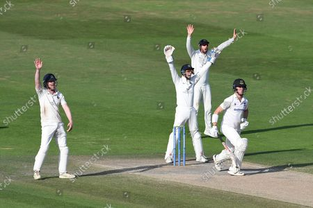 Sam Robson, John Simpson and Stephen Eskinazi of Middlesex appeal unsuccessfully for LBW against Ali Orr during the LV= Insurance County Championship match between Sussex County Cricket Club and Middlesex County Cricket Club at the 1st Central County Ground, Hove