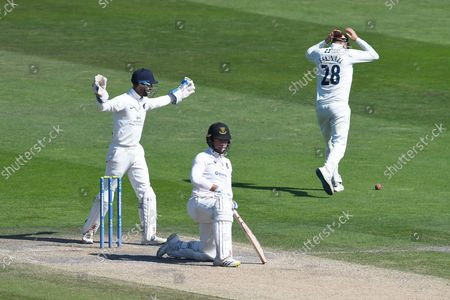 John Simpson and Steve Eskinazi react after Tom Haines of Sussex narrowly avoided sweeping the ball into his stumps during the LV= Insurance County Championship match between Sussex County Cricket Club and Middlesex County Cricket Club at the 1st Central County Ground, Hove