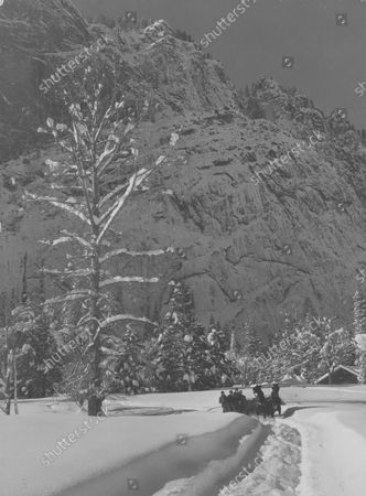 Stock Photo of Snow covered view of Yosemite National Park with people riding a horse drawn sleigh.