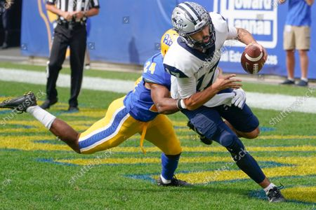 Stock Photo of New Hampshire quarterback Bret Edwards (17) looks to pass as Pittsburgh linebacker Phil Campbell III (24)I chases him in an NCAA college football game against Pittsburgh, in Pittsburgh