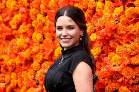 Stock Image of Sophia Bush