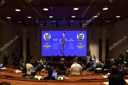 Nobel Committee member Patrik Ernfors (R) explains the 2021 Nobel Prize in Physiology or Medicine during a press conference at the Karolinska Institute in Stockholm, Sweden, on October 5, 2020. The 2021 Nobel Prize in physiology and medicine has been awarded to David Julius and Ardem Patapoutian for their discoveries of receptors for temperature and touch.