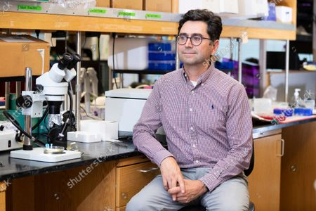 Stock Photo of Ardem Patapoutian poses for a portrait in his lab at the Dorris Neuroscience Center, in San Diego. Two scientists, Americans Patapoutian and David Julius, won the Nobel Prize in medicine for their discoveries into how the human body perceives temperature and touch