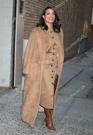 Stock Photo of Rosario Dawson