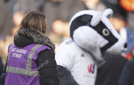 Stock Picture of Safe guarding steward Rosie O'Sullivan with Billy the Badger