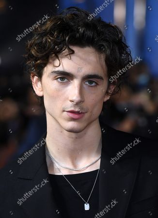 Stock Picture of Timothee Chalamet