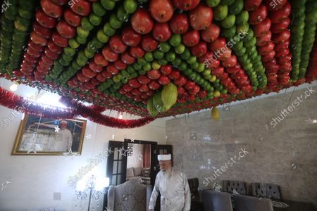 Stock Image of A member of the Samaritans religous group walks under his ceiling decoration made of etrog and lulav fruits on the occasion of 'Sukkot', or 'Feast of Tabernacles' at their most sacred site at Mount Gerizim, in the northern West Bank City of Nablus, 21 October 2020. The festival begins on 21 October and lasts for one week. It is commemorating the ancient Israelites exodus from Egypt and their wandering in the desert for forty years before arriving in the holy land, according to the Torah.