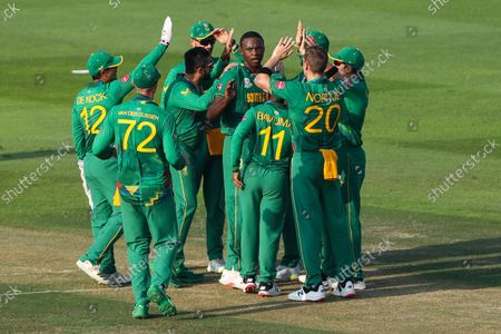 South African players celebrate the dismissal of Australia's David Warner during the Cricket Twenty20 World Cup match between South Africa and Australia in Abu Dhabi, UAE