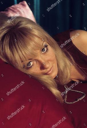 Stock Photo of Suzanne Vasey