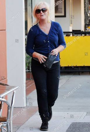 Editorial picture of Amy Poehler and son Abel James Arnett shopping, Beverly Hills, America - 25 Jan 2011