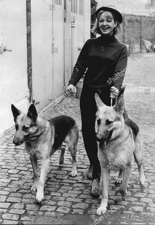 Actress Mitzi Rogers Walks Her Dogs Near Her Mews Home 1960's.