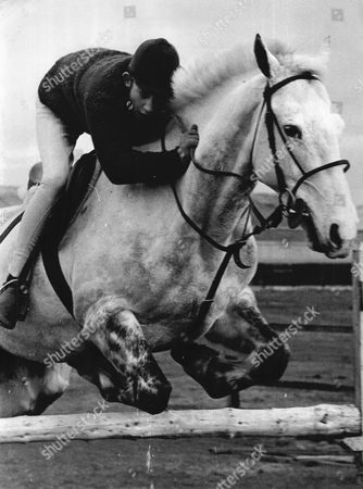 Freddie Broome Showjumper 15 Year Old Brother Of David Broome
