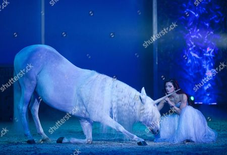 Horse as a unicorn, Magnifico, show by Andre Heller, world premiere on 08.02.2011, Munich, Bavaria, Germany, Europe
