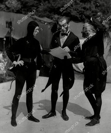 Stock Photo of Opera ' Summer Fantasia ' Fly (dianna Bell) Beetle (richard Klee) And Ant (dionyeius Macduff)