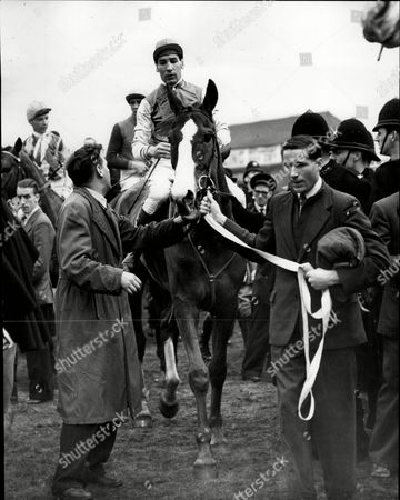 The 1954 Grand National At Aintree Royal Tan With Jockey Brian Marshall Being Led In After Winning The Race