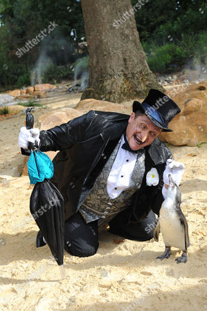 Editorial picture of The Penguin from 'Batman Live' stage production meets London Zoo's penguins, London, Britain - 22 Aug 2011