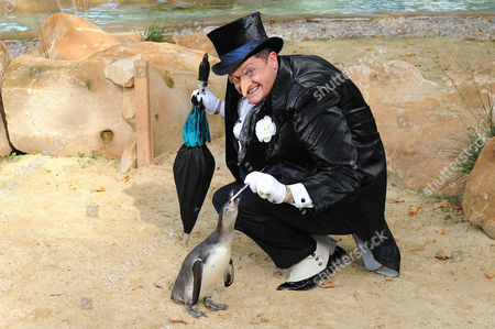 Alex Giannini in costume as 'The Penguin', with penguins