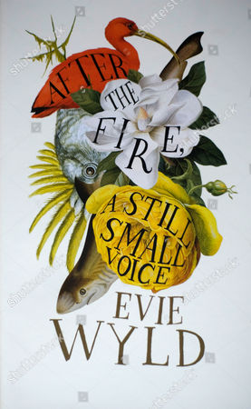 'After the Fire, a Still, Small Voice' by Evie Wyld