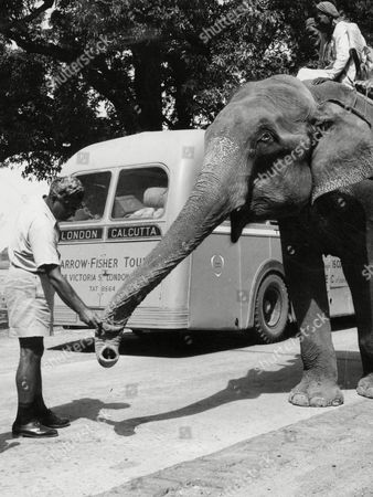Stock Photo of London To Calcutta Bus Trip 1957 (london To India By Bus) The Coach Full Of 20 British During Their Trip The Bus Passes An Elephant In Amritsar India