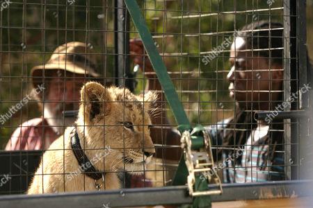 Deon Stewardson as Du Plessis and Atandwa Kani as Thabo.