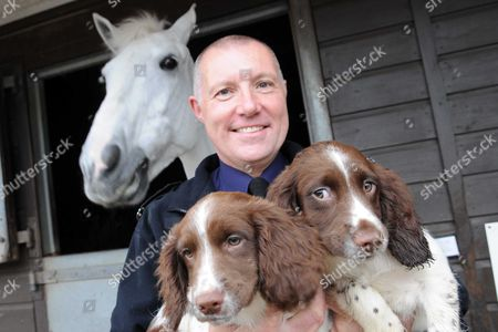 PC Adrian Lang of the South Wales Police Dog Section and Damby the police horse welcome puppies Woody and Norman